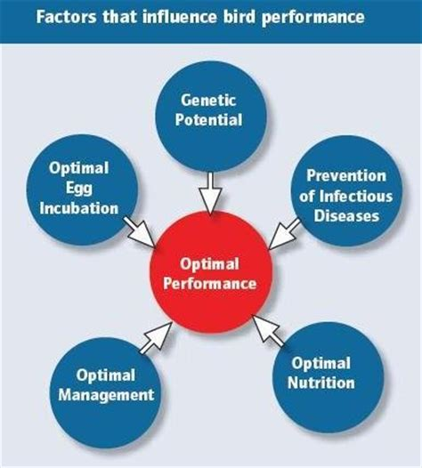 Research paper factors affecting academic performance of students